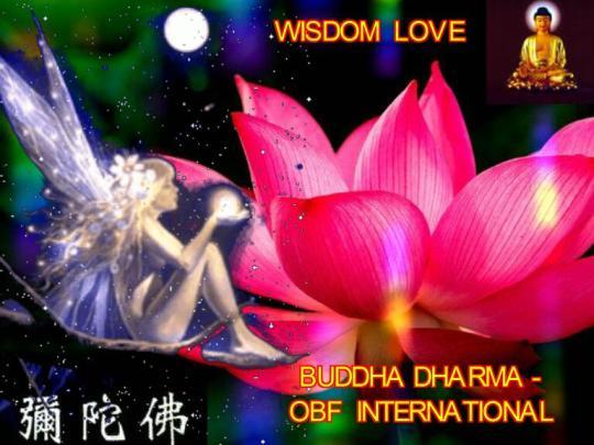 WISDOM  LOVE
