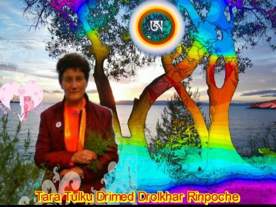 Tara Tulku Drimed Drolkhar Rinpoche : Simple and natural Blessings 3