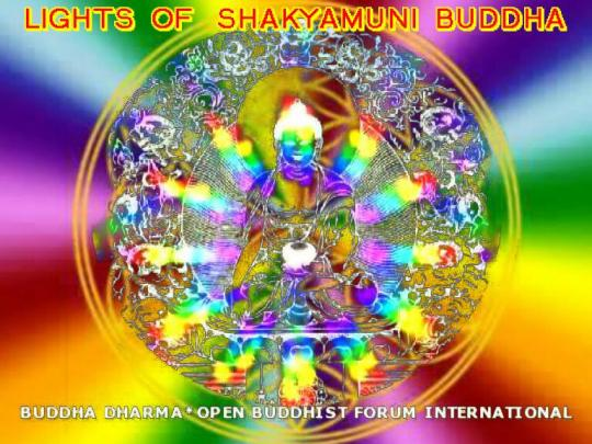 LIGHTS OF SHAKYAMUNI BUDDHA