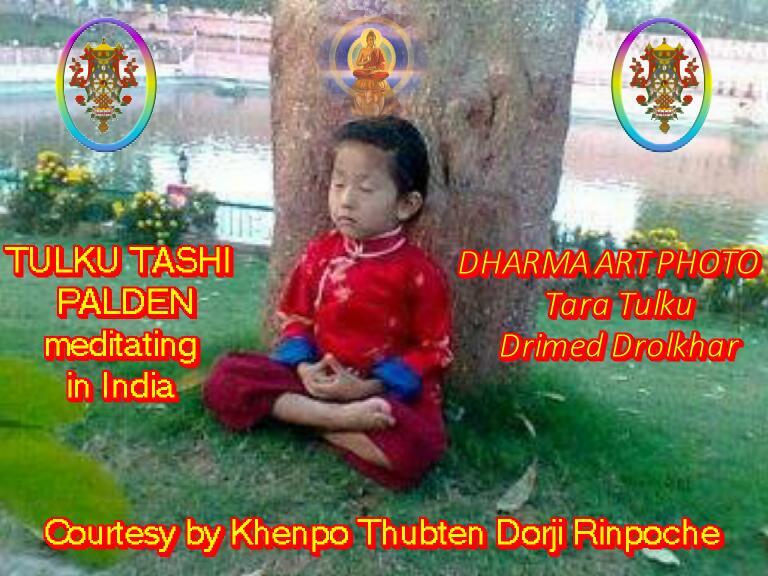 TULKU TASHI PALDEN meditating in India
