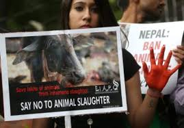 protests against gadhimai